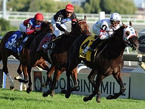 Colonial Turf Cup Attracts Older Crowd