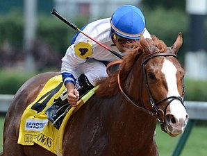 Shackleford Headed for Metropolitan Handicap