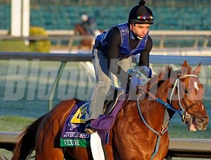 Vexor, Churchill Downs, Nov. 1, 2011.