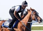 Uptowncharlybrown Scratched From Haskell