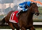 Cross the Line Ships East for Illinois Derby