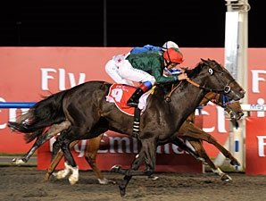 Mendip Scores Narrow Win in Burj Nahaar