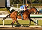 More Chocolate Wins Dirt Debut in La Canada