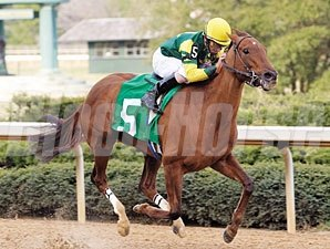 Hysterical Lady (green and yellow silks) begins her winning move at the head of the stretch in the Azeri (gr. III) at Oaklawn March 9.