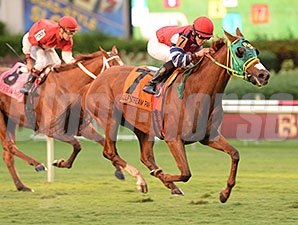 Parranda wins the 2013 Millions Filly and Mare Turf Preview Stakes.