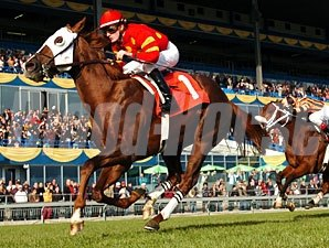 Field Commission wins the 2009 Neartic.