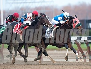 Nefertini wins the 2012 Go for Wand.