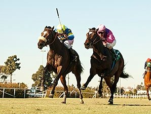 Late-Running Lucayan Takes Hollywood Turf Cup
