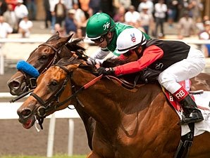 Who Will Step Forward in Royal Heroine Mile?