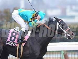 Joe Talamo celebrates his win aboard I Want Revenge in the Gotham