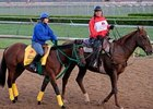 Smooth Air Likely Bound for Ohio Derby