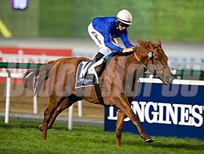 Safety Check wins the 2015 Longines Conquest Classic at the Dubai Racing Carnival.