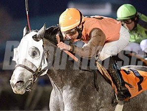 Platinum Song wins the 2013 Bara Lass Stakes.