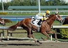 Stealcase Gets One More Chance at Derby