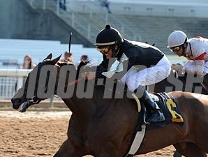 Warrior Maid wins the 2010 Louisiana Cup Filly and Mare Sprint.