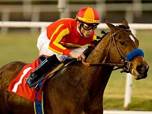 Baffert: Lucky Lookin' Good for Haskell