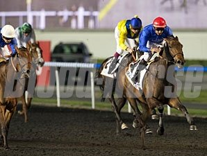 Lovely Pass wins the 2013 UAE 1000 Guineas.