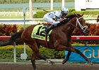 Gulfstream Cuts Florida Derby Purse
