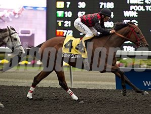 River Seven wins the 2012 Grey Stakes.