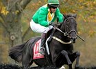 'Blues' is Named Steeplechase Champion