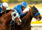 Baffert Sets Plans for 'Dude, Misremembered