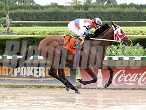 Sr. Quisqueyano wins the 2012 Seacliff.