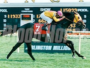 Mecke wins the 1996 Arlington Million
