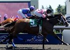 La Rocca Shows the Way in Ontario Matron