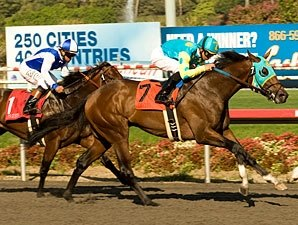 Jaycito Staying Home for Santa Anita Derby