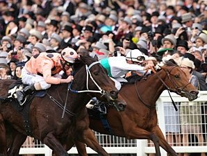 Black Caviar Just Holds in Ascot Nail-Biter