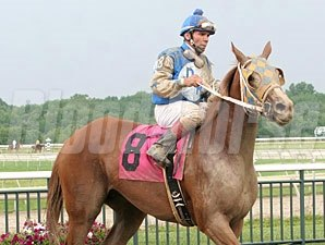 Great Lookinblonde wins the 2012 Power by Far.
