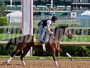 Alpha - Churchill Downs May 2, 2012.