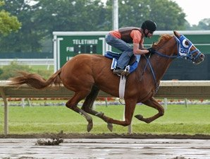 Summer Bird Puts in Final Breeze for Haskell
