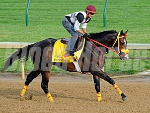 Trinniberg at Churchill Downs 4/30/2012