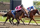 Major Gain Rallies to Take Arlington Futurity