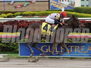 Successful Song wins the 2013 Sunshine Millions Distaff.