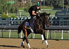 Podcast: Eclipse Awards 2013: Older Divisions