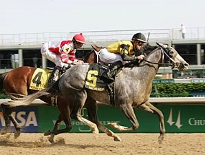 Macho Again to Skip Preakness