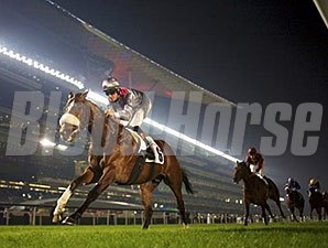 Mshawish wins the 2014 Zabeel Mile.