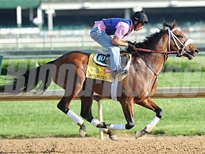 Optimizer - Churchill Downs, May 2, 2012