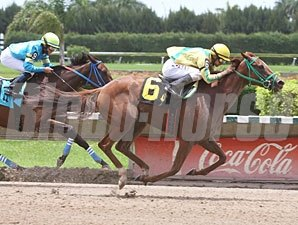 Trip for A. J. wins the 2011 Liberada Stakes.