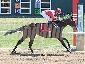 Fesstune wins the 2014 Oklahoma Stallion Colts & Geldings Division.