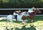 Preferential Squeezes Out Dowager Victory