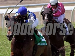 Upperline wins the 2011 Bayou Handicap.