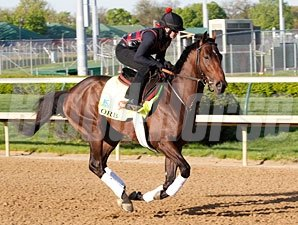 Orb works at Churchill Downs