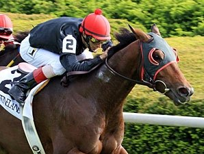 Point of Entry Out of Woodford Reserve
