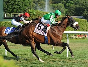 Winchester Rallies, Triumphs in Sword Dancer