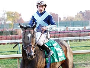 Aruna wins the 2010 Mrs. Revere.