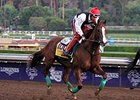 California Chrome to Contest Hollywood Derby