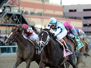 Castellano Picks Normandy Invasion for Derby